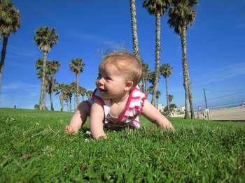 Crawling_beach